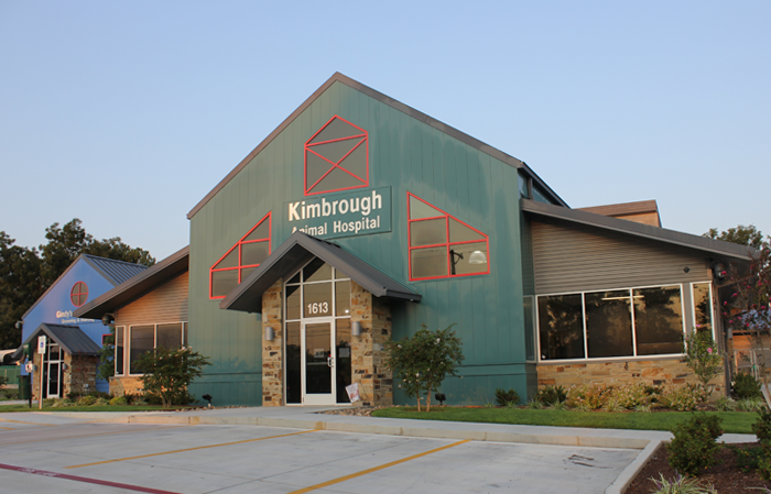 About Our Longview Animal Hospital